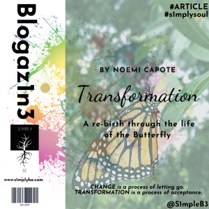 Article cover Transformation